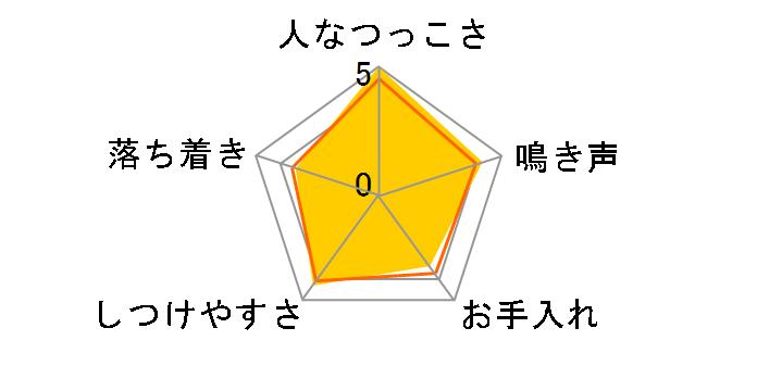 日本スピッツのユーザーレビュー